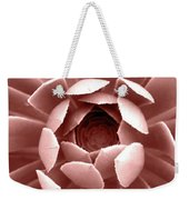 Blush Pink Succulent Plant, Cactus Close Up Weekender Tote Bag
