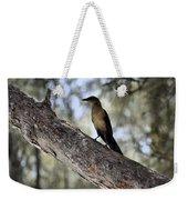 Boat - Tailed Grackle  Weekender Tote Bag