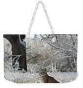 Bobcat And Heavy Frost Weekender Tote Bag