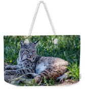 Bobcat In The Grass 2 Weekender Tote Bag