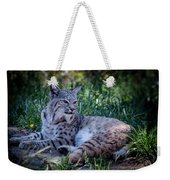 Bobcat In The Grass Weekender Tote Bag