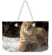 Bobcat In The Snow. Weekender Tote Bag