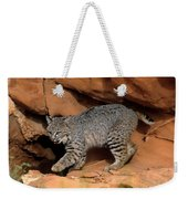 Bobcat Makes Its Move Weekender Tote Bag