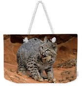Bobcat Ready--and Willin' Weekender Tote Bag