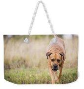 Boerboel Dog Weekender Tote Bag