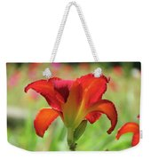 Bold Red - Daylily Weekender Tote Bag