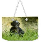 Bonobo Tyke Weekender Tote Bag