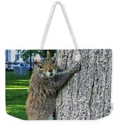 Boston Common Squirrel Hanging From A Tree Boston Ma Weekender Tote Bag