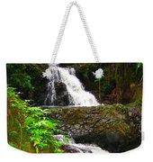 Botanic Gardens Waterfall Weekender Tote Bag