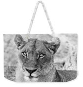Botswana  Lioness In Black And White Weekender Tote Bag