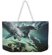 Four Bottlenose Dolphins Hawaii Weekender Tote Bag by Flip Nicklin