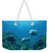 Bottlenose Dolphins And Coral Reef Weekender Tote Bag