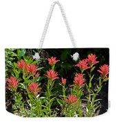 Bouquet Of Paintbrushes Weekender Tote Bag
