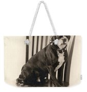 Boxer Sitting On A Chair Weekender Tote Bag