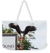 Boy Feeds Mr. Bald Eagle Weekender Tote Bag