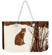 Bobcat In Snow Weekender Tote Bag