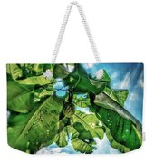 Branch With Green Fruit Weekender Tote Bag