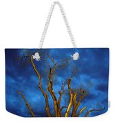 Branches Against Night Sky H Weekender Tote Bag