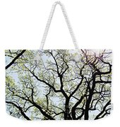 Branches Against Sky In Spring Outback Weekender Tote Bag