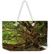 Branches And Roots Weekender Tote Bag by James Eddy