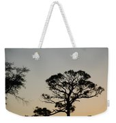 Branches In The Sunset Weekender Tote Bag
