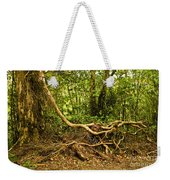 Branching Out In Costa Rica Weekender Tote Bag
