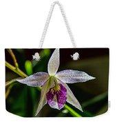 Brassocattleya Orchid Weekender Tote Bag