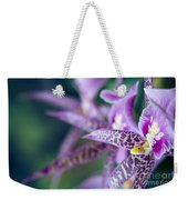 Bratonia Miltassia Charles M Fitch Izumi Orchids Weekender Tote Bag