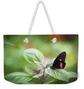 Brave Butterfly  Weekender Tote Bag by Cindy Lark Hartman
