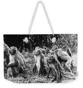 Brazil: Monkeys Weekender Tote Bag