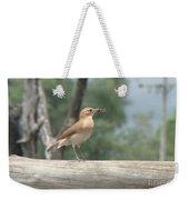 Brazilian Ovenbird Weekender Tote Bag