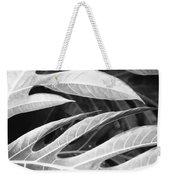 Breadfruit Tree Leaves Weekender Tote Bag