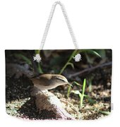 Breswick Wren On Tree Root 2 Weekender Tote Bag