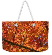 Bright Colorful Autumn Tree Leaves Art Prints Baslee Troutman Weekender Tote Bag