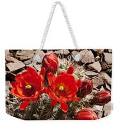 Bright Orange Cactus Blossoms Weekender Tote Bag