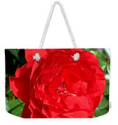Bright Red Rose At Pilgrim Place In Claremont-california  Weekender Tote Bag