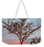 Bright Sun With Long Red Rays Shines Near The Trunk Weekender Tote Bag