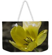 Bright Yellow Tulip Squared Weekender Tote Bag
