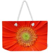 Brighteyes Weekender Tote Bag