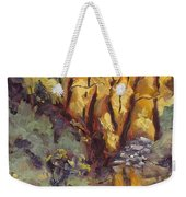 Brilliance At Service Creek Steamboat Springs Colorado Weekender Tote Bag