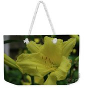 Brilliant Yellow Daylilies Flowering In A Garden Weekender Tote Bag