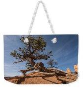 Bristle Cone Tree Weekender Tote Bag