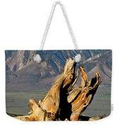 Bristlecone Pine Down Weekender Tote Bag