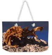 Bristlecone Pine - White Mountains Weekender Tote Bag
