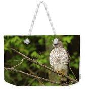 Broad Winged Hawk On The Lookout Weekender Tote Bag