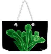 Broccoli, Esem Weekender Tote Bag