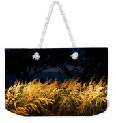 Brome Grass In A Field Near Princeton Weekender Tote Bag