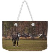 Brown And White Horse Weekender Tote Bag
