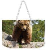 Brown Bear 3  Weekender Tote Bag