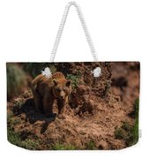 Brown Bear Watches From Steep Rocky Outcrop Weekender Tote Bag